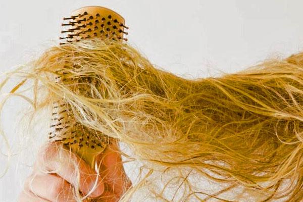 شانههای درشت، بهترین شانه برای موهای وز
